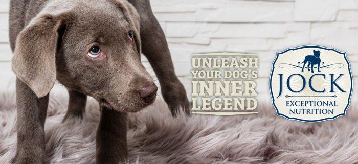 ATX Your dog's body Language - JOCK Dog FOOD